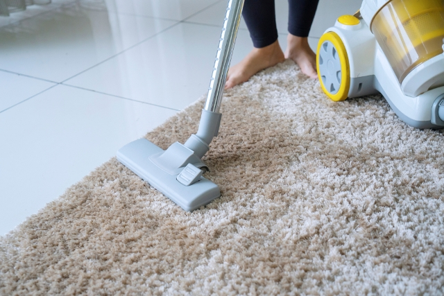 Why Should You Clean Your Carpets Regularly Pazillow